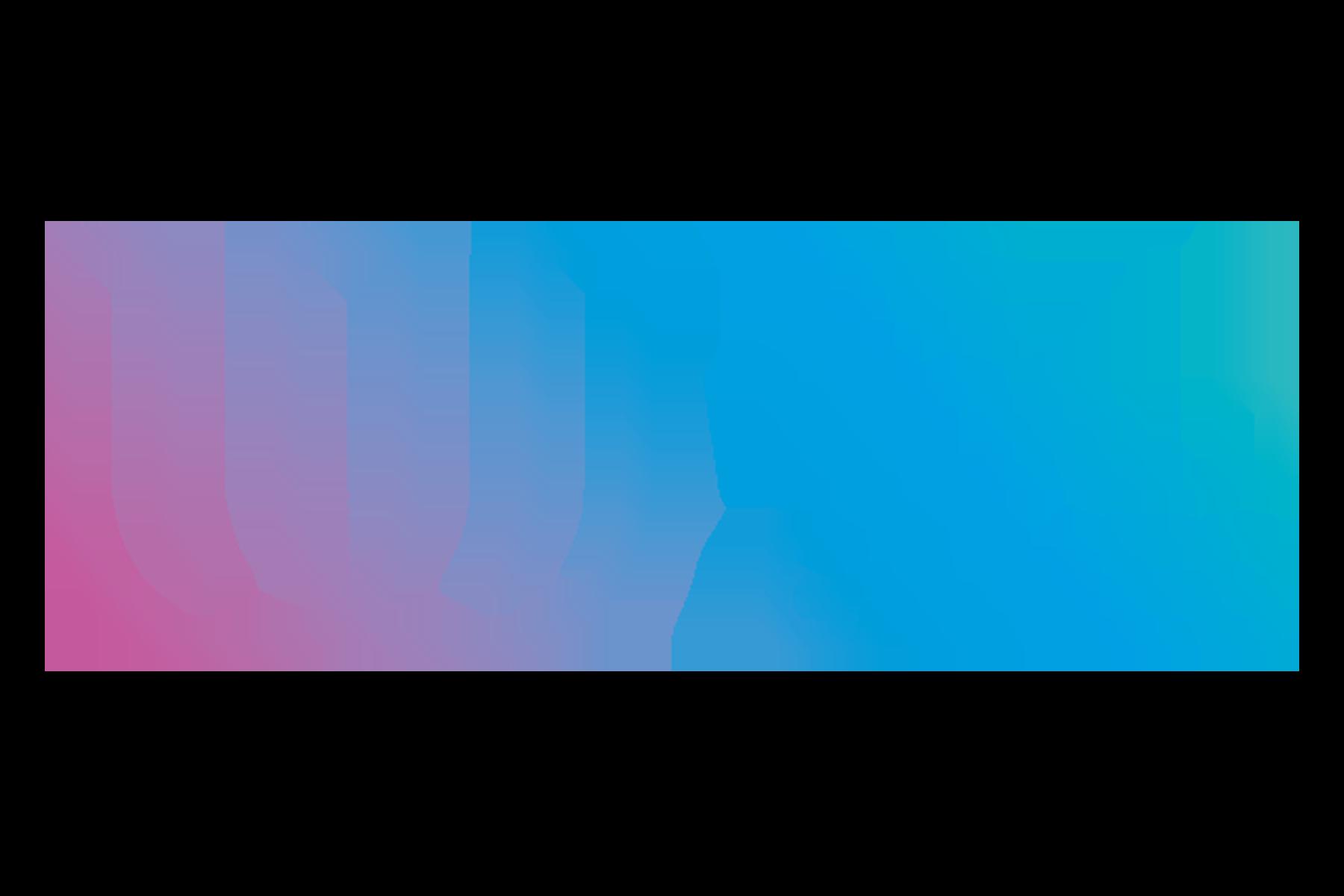 IWGA Council Meeting